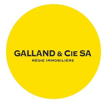 Galland & Cie SA, Régie immobilière